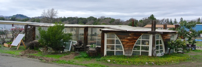 Coyote Valley Greenhouse