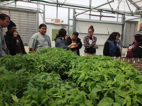 Field Trip to Seed Savers during Seed School in May